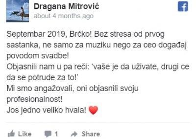 Dragana - Bendovi za svadbe preporuke